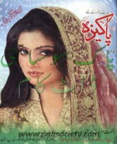 Pakeezah Digest November 2013